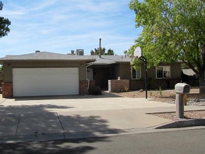Albuquerque Single Family Home For Sale: 8724 Rough Rider Road NE