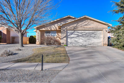 Rio Rancho Single Family Home For Sale: 3101 Chama Meadows Drive NE