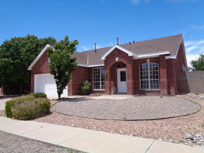 Valencia County Single Family Home For Sale: 1602 Bosque Vista Loop NW