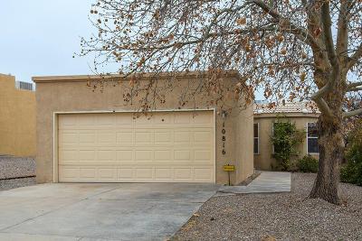 Albuquerque Single Family Home For Sale: 10816 Malaguena Lane NE