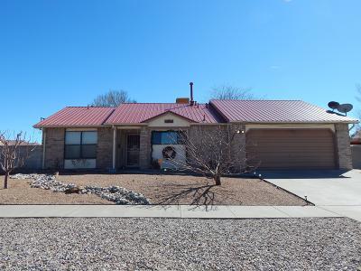 Valencia County Single Family Home For Sale: 1712 Nancy Lopez Boulevard