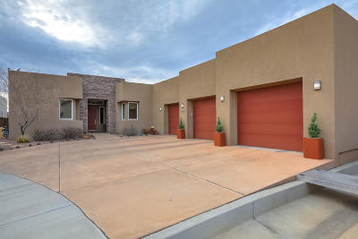 Albuquerque Single Family Home For Sale: 8809 Rich Court NE