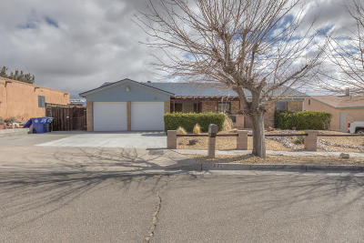 Albuquerque Single Family Home For Sale: 7216 Mojave Street NW