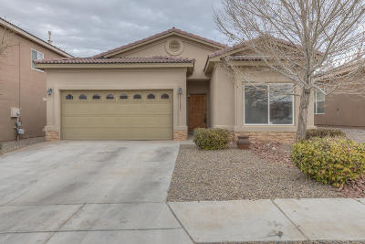 Albuquerque Single Family Home For Sale: 11605 Blue Ribbon Road SE