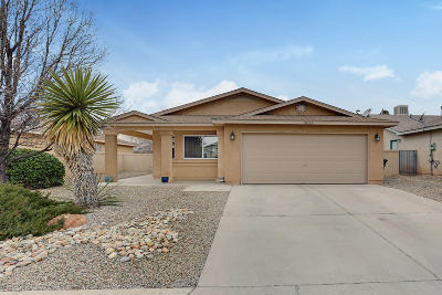 Rio Rancho Single Family Home For Sale: 3025 Mason Meadows Drive NE