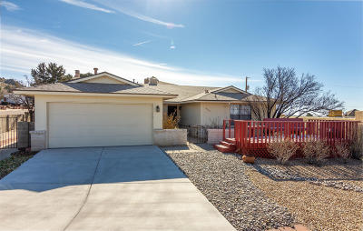 Albuquerque Single Family Home For Sale: 14208 Encantado Road NE