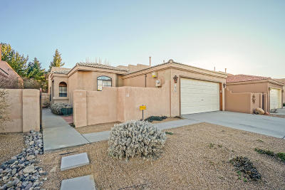 Albuquerque Single Family Home For Sale: 415 Serenity Court SE