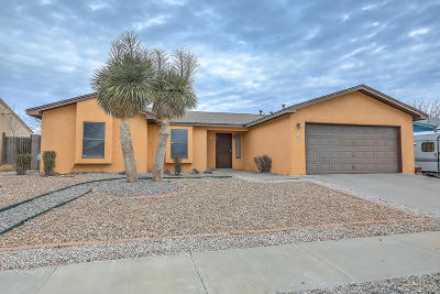 Albuquerque Single Family Home For Sale: 5301 Desert Sand Place NW