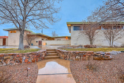 Albuquerque Single Family Home For Sale: 1619 Harvard Drive NE