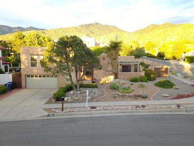 Albuquerque Single Family Home For Sale: 1000 Daskalos Drive NE