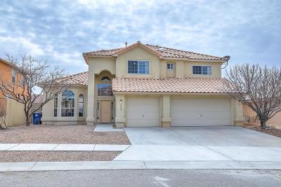 Albuquerque Single Family Home For Sale: 6806 Tesoro Place NE