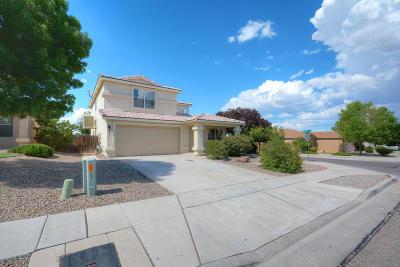 Albuquerque Single Family Home For Sale: 5339 Stream Stone Avenue NW