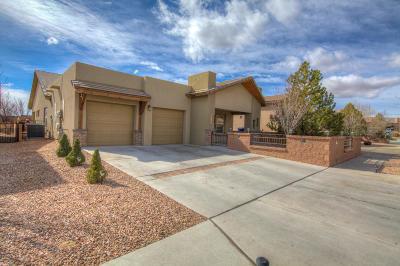 Albuquerque Single Family Home For Sale: 6558 Basket Weaver Avenue NW