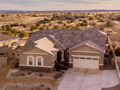 Rio Rancho Single Family Home For Sale: 2400 Desert View Road NE