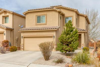 Albuquerque Single Family Home For Sale: 9635 Entrada Vista Avenue NW