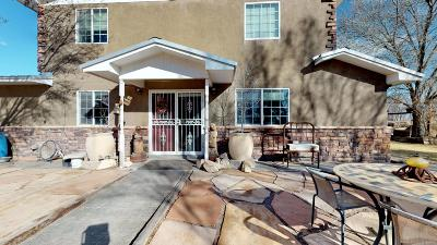 Single Family Home For Sale: 1210 Bosque Loop