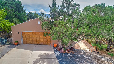 Sandia Heights Single Family Home For Sale: 617 Cedar Hill Road NE