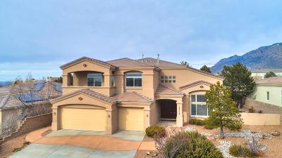Single Family Home For Sale: 13104 Desert Moon Place NE