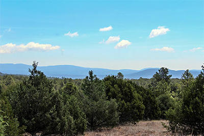 Santa Fe County Residential Lots & Land For Sale: 150 Avenida Ponderosa