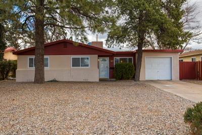 Albuquerque Single Family Home For Sale: 1604 Alvarado Drive NE