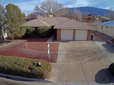 Albuquerque Single Family Home For Sale: 8801 Rough Rider Road NE