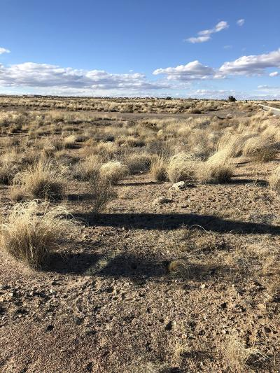 Bernalillo County Residential Lots & Land For Sale: 6519 Pato Road