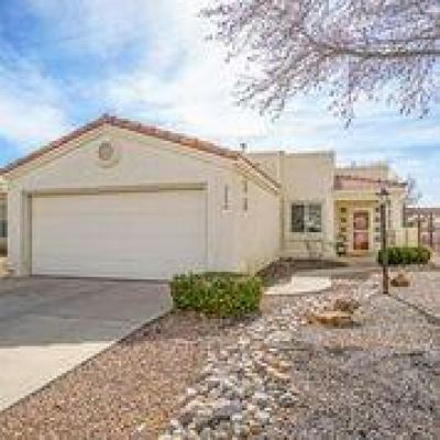 Rio Rancho Single Family Home For Sale: 563 Hermit Falls Drive SE