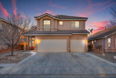 Rio Rancho Single Family Home For Sale: 1282 Mirador Loop NE
