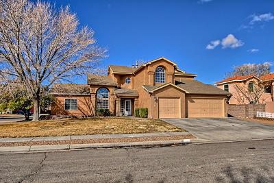 Albuquerque Single Family Home For Sale: 6501 Mesa Solana Place NW