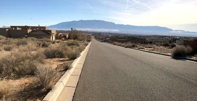 Rio Rancho Residential Lots & Land For Sale: 1229 22nd Avenue SE