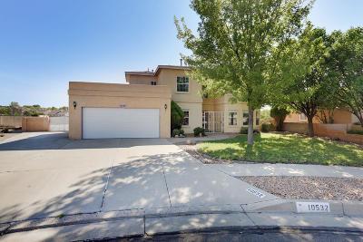 Albuquerque NM Single Family Home For Sale: $319,900