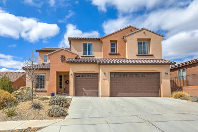 Rio Rancho Single Family Home For Sale: 31 Vista Larga Place NE
