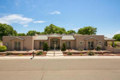 Valencia County Single Family Home For Sale: 106 Tres Cantos Avenue