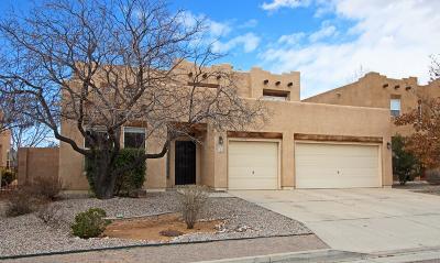 Albuquerque Single Family Home For Sale: 6605 Salt Cedar Trail NW