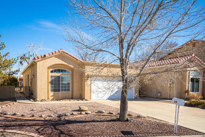Rio Rancho Single Family Home For Sale: 635 Lakeview Circle SE