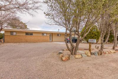 Albuquerque Single Family Home For Sale: 1328 Atrisco Drive NW