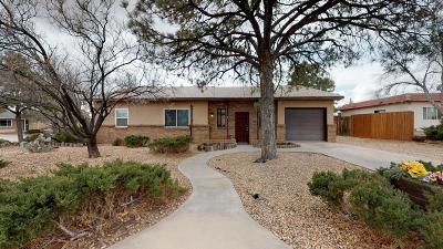 Rio Rancho Single Family Home For Sale: 4106 Malaga Court SE