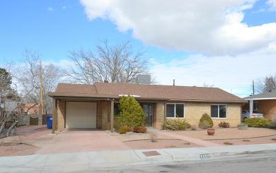Albuquerque Single Family Home For Sale: 2327 Hendola Drive NE