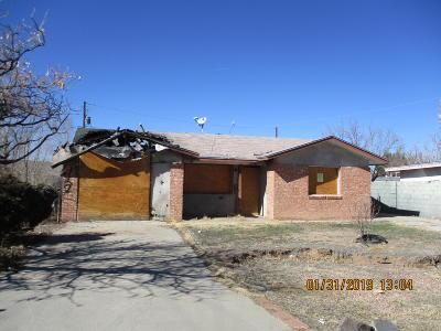 Albuquerque Single Family Home For Sale: 4507 Valley Garden Circle Circle SW