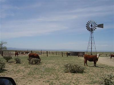 Valencia County Farm & Ranch For Sale: Cordova Ranch