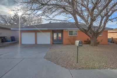 Albuquerque Single Family Home For Sale: 2501 Hiawatha Drive NE