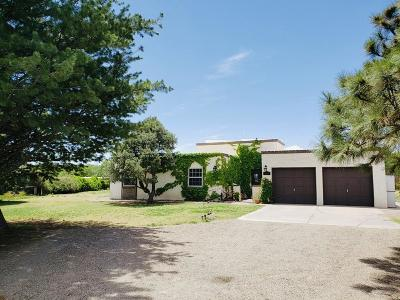 Corrales Single Family Home For Sale: 160 Pueblito Road