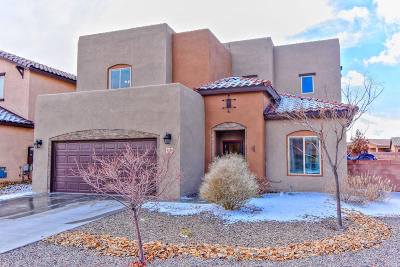 Albuquerque Single Family Home For Sale: 9116 Breezy Court NW