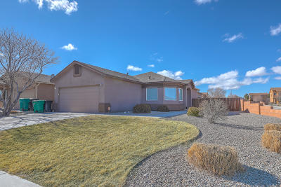 Rio Rancho Single Family Home For Sale: 804 Waterfall Drive