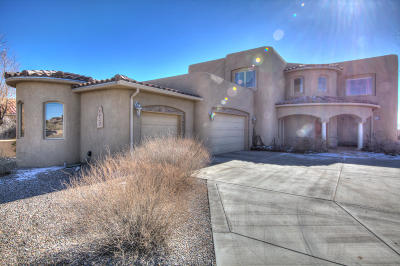 Rio Rancho Single Family Home For Sale: 6620 Pasilla Road NE