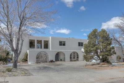 Albuquerque Single Family Home For Sale: 3309 Embudito Drive NE