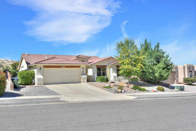Rio Rancho Single Family Home For Sale: 873 Loma Pinon Loop NE