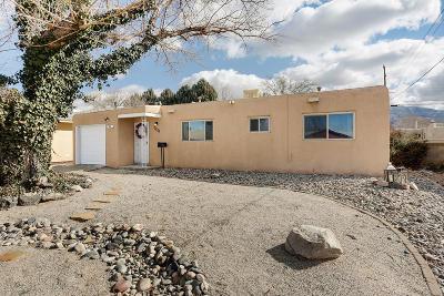 Albuquerque Single Family Home For Sale: 10320 Betts Drive NE