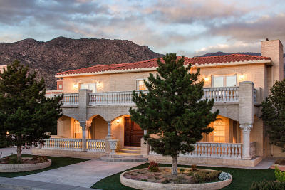 Albuquerque Single Family Home For Sale: 1604 Torribio Drive NE