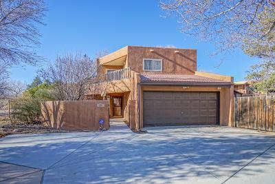 Albuquerque Single Family Home For Sale: 2811 Indian Farm Lane NW
